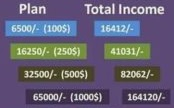 Plan and Total Income