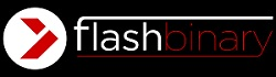 Flash Binary Logotype